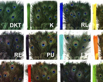 """12 COLORS Peacock Eye Feathers 8-15"""" - 5 to 100 pieces Dyed Over Natural Peacock Tail Feathers Bulk  ZUCKER® USA"""