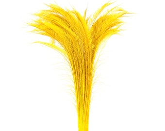 "Long Bleach Dyed Peacock Swords 25-40"" GOLD, 10 to 100 Piece, Floral Decor, Millinery, Costume ZUCKER® Dyed & Sanitized in USA"