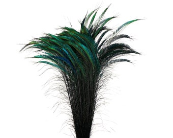 "Long Peacock Swords, 10 to 100 Pcs 25-40"" Stem Dyed - BLACK, Floral Decor, Wedding Centerpieces, Wholesale Feathers ZUCKER® Sanitized in USA"