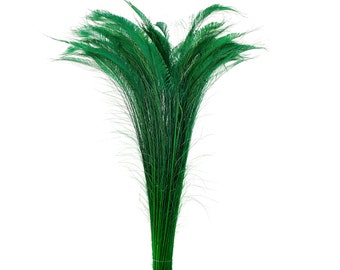 "Long Bleach Dyed Peacock Swords 25-40"" KELLY Green, 10 to 100 Piece, Floral Decor, Millinery, Costume ZUCKER® Dyed & Sanitized in USA"