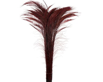 """Long Bleach Dyed Peacock Swords 25-40"""" BURGUNDY, 10 to 100 Piece, Floral Decor, Millinery, Jewelry Design ZUCKER® Sanitized in USA"""