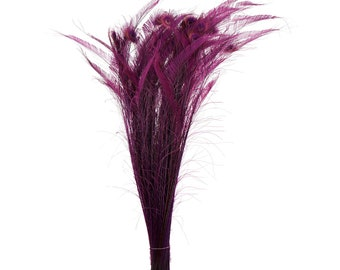 "Long Bleach Dyed Peacock Swords 25-40"" PURPLE Eggplant, 10 to 100 Piece, Floral Decor, Millinery, Costume ZUCKER® Dyed & Sanitized in USA"