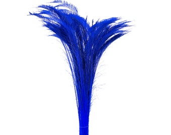 "Long Bleach Dyed Peacock Swords 25-40"" ROYAL Blue, 10 to 100 Piece, Floral Decor, Millinery, Costume ZUCKER® Dyed & Sanitized in USA"