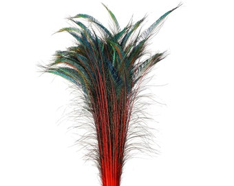"Long Peacock Swords 10 to 100 Pcs 25-40"" Stem Dyed RED Floral Decor, Wedding Centerpiece, Wholesale Feather ZUCKER® Sanitized USA"