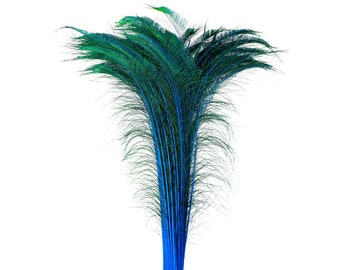 """Long Peacock Swords 10 to 100 Pc 25-40"""" Stem Dyed Dark TURQUOISE Floral Decor, Wedding Centerpiece, Wholesale Feather ZUCKER® Sanitized USA"""