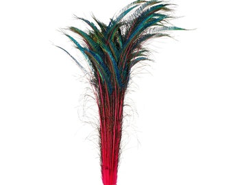 "Long Peacock Swords 10 to 100 Pcs 25-40"" Stem Dyed Shocking PINK, Floral Decor, Wedding Centerpiece, Wholesale Feather ZUCKER® Sanitized USA"