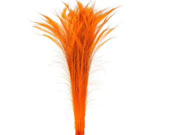 "Long Bleach Dyed Peacock Swords 25-40"" ORANGE, 10 to 100 Piece, Floral Decor, Millinery, Costume ZUCKER® Dyed & Sanitized in USA"