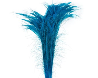"Long Bleach Dyed Peacock Swords 25-40"" Dark AQUA, 10 to 100 Pieces, Floral Decor, Millinery, Jewelry Design ZUCKER® Dyed & Sanitized in USA"