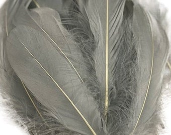 """Goose Feathers, 6-8"""" Loose Goose Pallet Feathers Silver Grey, Grey Goose Feathers For Arts and Craft Supplies ZUCKER®"""