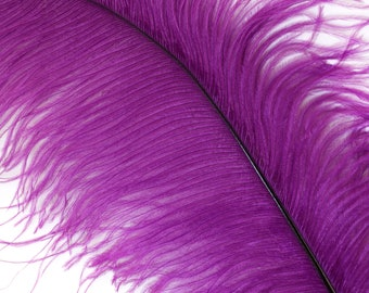 """PURPLE 25 Ostrich Feathers 17""""- 20"""" - 25pc/pkg - Perfect for Feather Centerpieces,Party Decor,Millinery & Carnival Costumes ZUCKER®"""