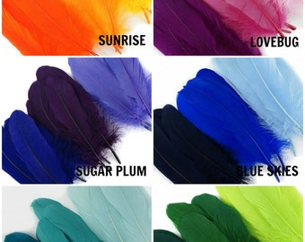 12 Piece Mixed Dyed Goose Pallet Feathers - For DIY Arts , Crafts, Dream Catchers, Millinery, Carnival, Costume & Cosplay Design ZUCKER®