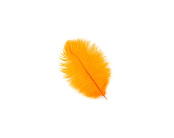 "MANGO 4-8"" Bulk Ostrich Feathers 1/4LB - For Feather Centerpieces, Party Decor, Millinery, Fashion & Costume Design ZUCKER®"
