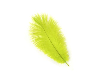 "12 LIME Ostrich Feathers 9-12"" Perfect for Feather Small Feather Centerpieces, Party Decor, Millinery & Costume Design ZUCKER®"
