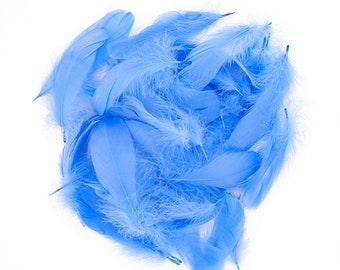 "Goose Nagoire Feathers, 4-6"" Sky Blue Loose Goose Nagoire Feathers, Small Feathers, Arts and Craft Supplies ZUCKER®"