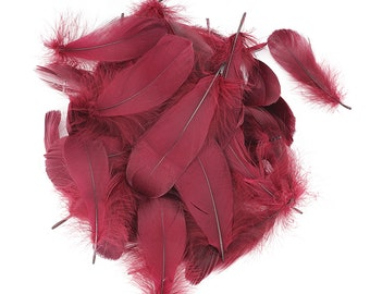 "Goose Nagoire Feathers, 4-6"" Burgundy Wine Loose Goose Nagoire Feathers, Small Feathers, Arts and Craft Supplies ZUCKER®"