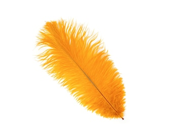 "12 MARIGOLD 13-16"" Ostrich Feathers - Perfect for Medium Feather Centerpieces & Bouquets, Party Decor, Millinery and Costume Design ZUCKER®"