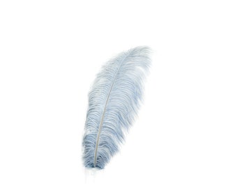 "12 SILVER 17""+ Ostrich Feathers 1DZ - Perfect for Large Feather Centerpieces, Party Decor, Millinery, Carnival & Costume Design ZUCKER®"