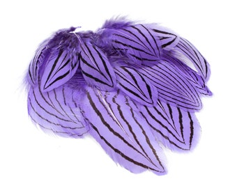 """Lavender Silver Pheasant Plumage Unique Feathers, 1 DOZEN 2-4"""", Dyed Silver Pheasant Barred Plumage ZUCKER® Dyed & Sanitized USA"""