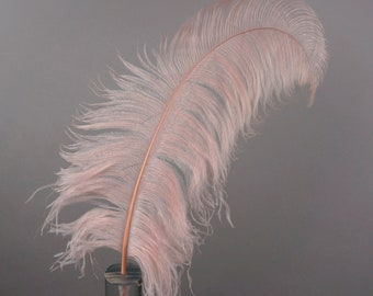 """Large Ostrich Feathers 25 Pieces 17-25"""" Prime Ostrich Femina Wing Plumes PINK Champagne, Wedding Centerpiece, Carnival Feathers ZUCKER® USA"""