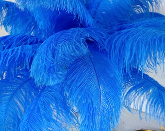 """Large Ostrich Feathers 17-25"""", 1 to  25 Pieces, SKY Blue, Prime Femina Wing Feathers for Centerpieces, Millinery, Carnival, Costume ZUCKER®"""