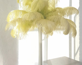 "OP15LB - Bulk Ostrich Feathers 13-16""  PER 1/4LB - Perfect for Feather Centerpieces, Party Decor, Millinery and Costume ZUCKER™"