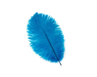 "12 DK. TURQUOISE Ostrich Feathers 9-12"" Perfect for Feather Small Feather Centerpieces, Party Decor, Millinery & Costume Design ZUCKER®"