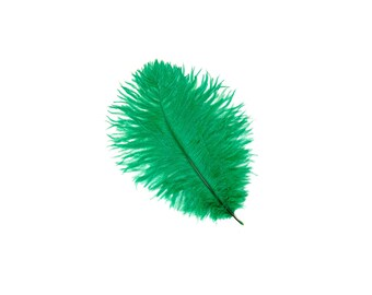 "12 EMERALD Ostrich Feathers 9-12"" Perfect for Feather Small Feather Centerpieces, Party Decor, Millinery & Costume Design ZUCKER®"