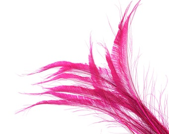 "Bleach Dyed Peacock Sword Feathers 10 to 100 Pieces 15-25"" Hot PINK, Floral Decor, Millinery, Jewelry Design ZUCKER® Dyed & Sanitized in USA"