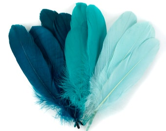 Mixed Dyed Goose Pallet Feathers 12 pieces SEAGREEN Goose Feathers, Aqua Craft Feathers and Art Supplies  ZUCKER®