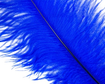 """ROYAL 25 Ostrich Feathers 17""""- 20"""" - 25pc/pkg - Perfect for Feather Centerpieces,Party Decor,Millinery & Carnival Costumes ZUCKER®"""