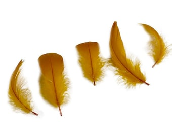 """Goose Nagoire Feathers, 4-6"""" Antique Gold Loose Goose Nagoire Feathers, Small Feathers, Arts and Craft Supplies ZUCKER®"""