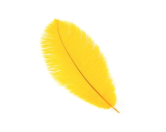 "12 GOLD 13-16"" Ostrich Feathers - Perfect for Medium Feather Centerpieces & Bouquets, Party Decor, Millinery and Costume Design ZUCKER®"