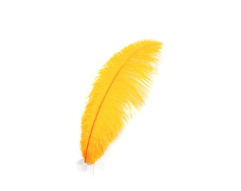 "12 MANGO 17""+ Ostrich Feathers 1DZ - Perfect for Large Feather Centerpieces, Party Decor, Millinery, Carnival & Costume Design ZUCKER®"