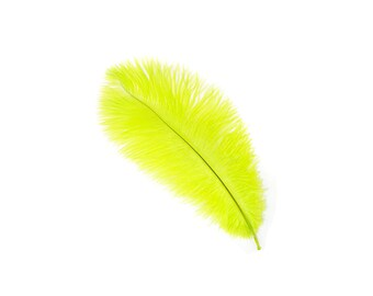 "12 LIME 13-16"" Ostrich Feathers - Perfect for Medium Feather Centerpieces & Bouquets, Party Decor, Millinery and Costume Design ZUCKER®"