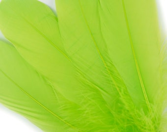 "BULK 6-8"" LIME Loose Dyed Goose Pallet Feathers - For Arts, Crafts, Dream Catcher, Millinery, Carnival, Costume & Cosplay Design ZUCKER®"
