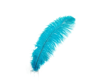 "12 DK.AQUA 17""+ Ostrich Feathers 1DZ - Perfect for Large Feather Centerpieces, Party Decor, Millinery, Carnival & Costume Design ZUCKER®"