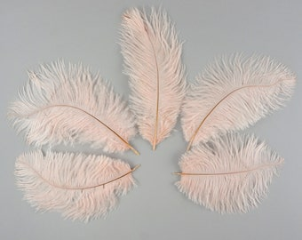 """Bulk Ostrich Feathers 4-6"""" Pink CHAMPAGNE Blush, Mini Ostrich Drabs, Bouquets, Boutonnieres,Small Centerpieces ZUCKER®"""