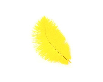 "12 YELLOW Ostrich Feathers 9-12"" Perfect for Feather Small Feather Centerpieces, Party Decor, Millinery & Costume Design ZUCKER®"