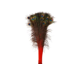 Red Dyed Peacock Feathers, 25-40 inches Stem Dyed Peacock Tail Feathers, Peacock Tail Feathers with Large Iridescent Eyes ZUCKER®