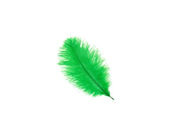 """12 KELLY 4-6"""" Ostrich Feathers Perfect for Floral Bouquets & Small Feather Centerpieces, Party Decor, Millinery and Costume Design ZUCKER™"""