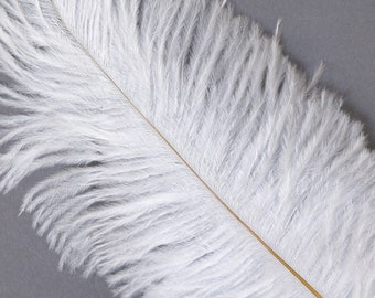 """WHITE 25 Ostrich Feathers 17""""- 20"""" - 25pc/pkg - Perfect for Feather Centerpieces,Party Decor,Millinery & Carnival Costumes ZUCKER®"""