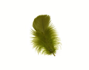 Turkey Feathers, Olive Green Loose Turkey Plumage Feathers, Short T-Base Body Feathers for Craft and Fly Fishing Supply ZUCKER®