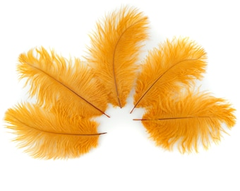 """Bulk Ostrich Feathers 4-6"""" MARIGOLD, Ostrich Drabs, Bouquets, Boutonnieres, Mini Centerpieces ZUCKER® Dyed and Sanitized USA"""