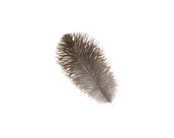"""NATURAL Bulk 9-12"""" Ostrich Feathers 1/4LB - For Feather Centerpieces,Party Decor,Millinery,Carnival,Fashion & Costume Design ZUCKER®"""