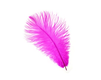 "12 SHOCKING PINK Ostrich Feathers 9-12"" Perfect for Feather Small Feather Centerpieces, Party Decor, Millinery & Costume Design ZUCKER®"