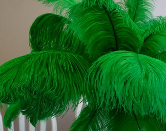 "Ostrich Feathers 17-20"" KELLY Green, 1 to 25 pcs, Ostrich Plumes, Carnival Samba, Ostrich Drab, Mardi Gras, Centerpieces, Fan ZUCKER® USA"