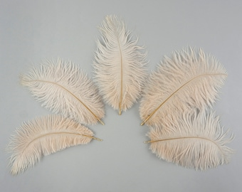 "Ostrich Feathers 4-6"" BEIGE, Mini Ostrich Drabs, Floral Bouquets, Boutonnieres, Small Centerpieces, Hat Trims, ZUCKER®"