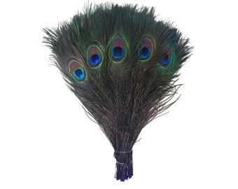 "REGAL 100pcs Bulk 8-15"" Stem Dyed Peacock Tail Feathers - For Arts & Crafts, Floral Decor, Millinery and Jewelry Design  ZUCKER®"