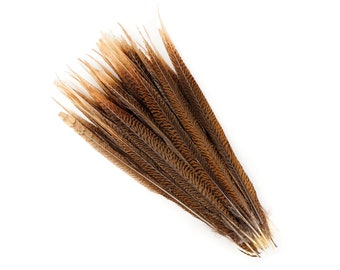 "Natural Tail Feathers - Long Golden Pheasant 16-18"" - 10 to 100 PCS - Natural Color Golden Pheasant Tail Feathers ZUCKER®"