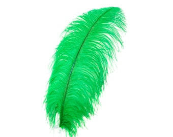 """KELLY 25 Large Ostrich Feathers 17-25"""" 25pc/pkg - For Feather Centerpieces, Party Decor, Millinery , Carnival , Costume ZUCKER®"""
